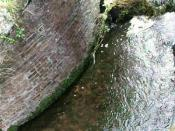 Norfolk Lavender - Caley Mill - waterfall - video clip