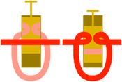 Piston valve in a brass instrument