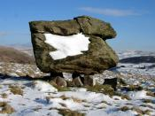English: Textbook erratic. This erratic features in many geology and geography textbooks!