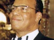 Louis Farrakhan, leader of Nation of Islam, has made several remarks that the Anti-Defamation League and others considered anti-semitic