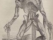 Andreas Vesalius - Dissected human body - WGA25036