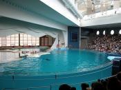 National Aquarium, Baltimore, USA