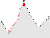 Natural selection is expected to push fitness to a peak, but that peak often is not the highest.