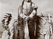 Alleged photo of Crazy Horse of the Black Hills Oglala Sioux.