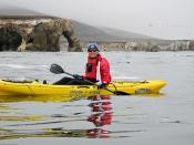 Ron Gabel and Mike Baird kayak paddle the coastline for over three hours and about six miles round-trip, south of the put-in at Spooner's Cove in Montana de Oro (MdO) State Park