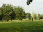 English: Cottesmore Golf and Country Club - Golfer Taking a Swing. The view is of a golfer on the fairway taking a swing at his ball.