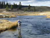 Fly fisherman above Ojo Calenti Bend on the Firehole River October 2007