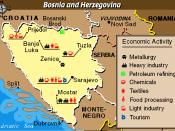 Economic Activity Map of Bosnia and Herzegovina from the Balkans Regional Atlas