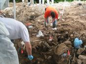 English: A mass grave in eastern Bosnia