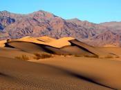 English: Mesquite Dunes in Death Valley National Park Français : Les Mesquite Dunes (Litt: les dunes à Prosopis). Vallée de la mort, Californie. (États Unis d'Amérique).