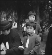 Hayward, California. Two children of the Mochida family who, with their parents, are awaiting evacu . . . - NARA - 537507