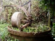 English: Cider with Rosie. This rather overgrown cider press is just off the B4070, where the path leads up to Wickridge Hill. It's only a quarter of a mile from Slad where Laurie Lee, of