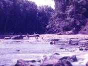 Cahill's Crossing on the East Alligator River March 1977