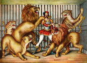 ;Lion tamer Lion tamer in cage with two lions, a lioness, and two tigers.