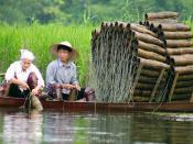 Traditional fish traps, Hà Tây, Vietnam.