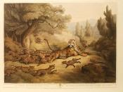 English: Print depicting a tiger being attacked by dholes from Samuel Howett & Edward Orme, Hand Coloured, Aquatint Engravings