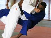 Hapkido holds many throwing techniques in common with judo.