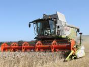 Kimble Harvest 2013 - IMG_7501