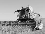 Kimble Harvest 2013 - IMG_7501r