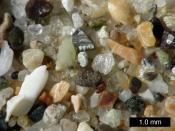 English: Sand from Pismo Beach, California.