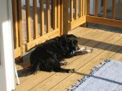 cori on the sleeping porch