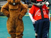OMER the raccoon (right) is the mascot of Odyssey. He is shown here with SNYPS, the New York state mascot.