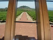 La Rioja LSI 2007 084