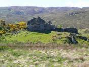 English: Tubeg in ruins This has been quite a substantial house, with internally plastered walls and masonry door and window frames.