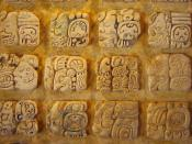 Maya stucco glyphs diplayed in the museum at Palenque, Mexico.