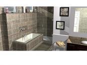 BathCAD tile bath software 2012