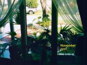 November 2001 019