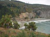 From Goat Island  (Mapoutahi Pa) towards Doctors Point Blueskin Bay Otago