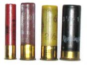 English: Shotgun shell comparison (left to right): .410, 28 gauge, 20 gauge, 12 gauge