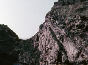 Tintagel In Ferraniacolour - 1957