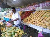 English: Mango fruit seller at Tenkasi