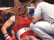 Boxing barnstar. From the Hungarian Wikipedia, the original description page is/was here