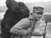 English: Bear Hunter on Kodiak. Close view of man with huge bear head strapped to his back.