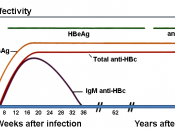 English: Modified version of Image:Chronic HBV.png by User:GrahamColm