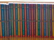 This is a collection of Animorphs books.